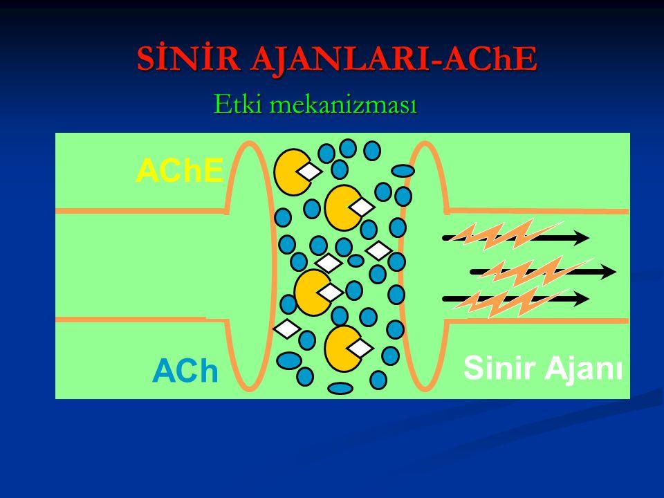 AChE ACh Sinir Ajanı Etki mekanizması SİNİR AJANLARI-AChE