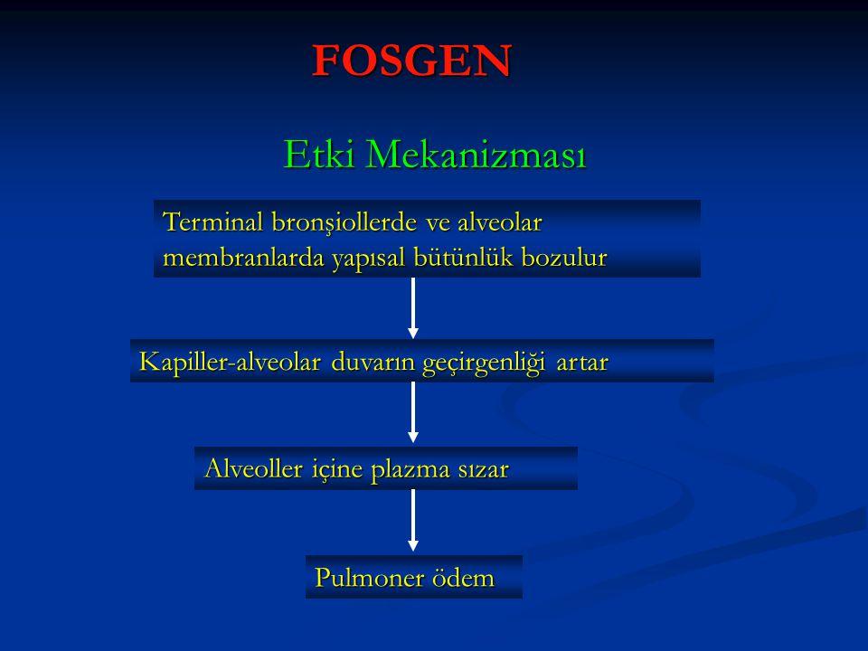 FOSGEN Terminal bronşiollerde ve alveolar membranlarda yapısal bütünlük bozulur Kapiller-alveolar duvarın geçirgenliği artar Alveoller içine plazma sı