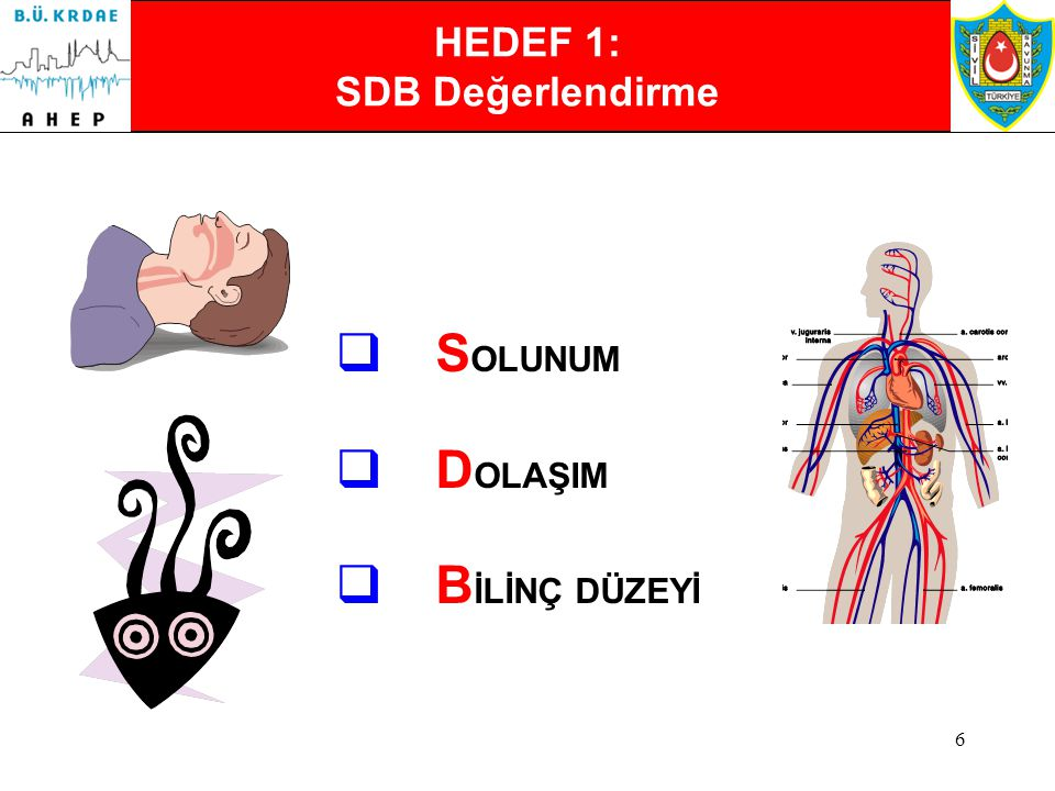 """5 3. Bölümün Hedefleri 1.Yaralıların ağırlığına göre sınıflandırılabilmesi için """"SDB: Solunum, Dolaşım, Bilinç Değerlendirme"""" tekniğinin öğrenilmesi v"""