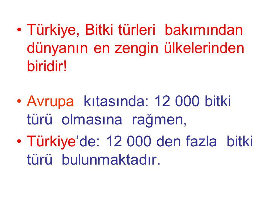 Türkiye, Bitki türleri bakımından dünyanın en zengin ülkelerinden biridir! Avrupa kıtasında: 12 000 bitki türü olmasına rağmen, Türkiye'de: 12 000 den
