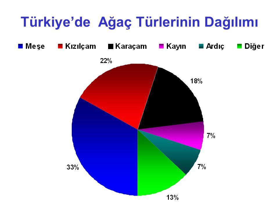 Türkiye'de Ağaç Türlerinin Dağılımı
