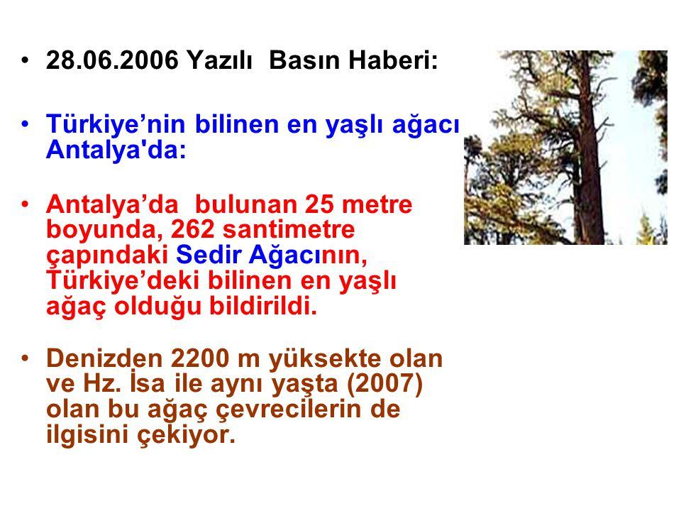 28.06.2006 Yazılı Basın Haberi: Türkiye'nin bilinen en yaşlı ağacı Antalya'da: Antalya'da bulunan 25 metre boyunda, 262 santimetre çapındaki Sedir Ağa