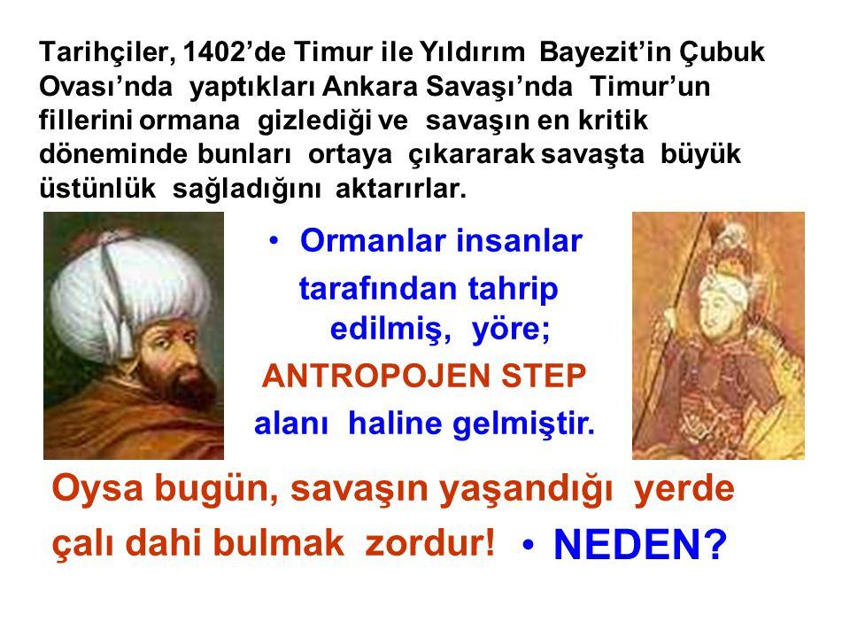 Tarihçiler, 1402'de Timur ile Yıldırım Bayezit'in Çubuk Ovası'nda yaptıkları Ankara Savaşı'nda Timur'un fillerini ormana gizlediği ve savaşın en kriti