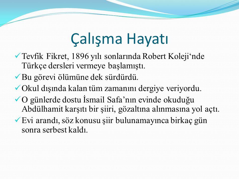 Çalışma Hayatı Tevfik Fikret, 1896 yılı sonlarında Robert Koleji'nde Türkçe dersleri vermeye başlamıştı. Bu görevi ölümüne dek sürdürdü. Okul dışında