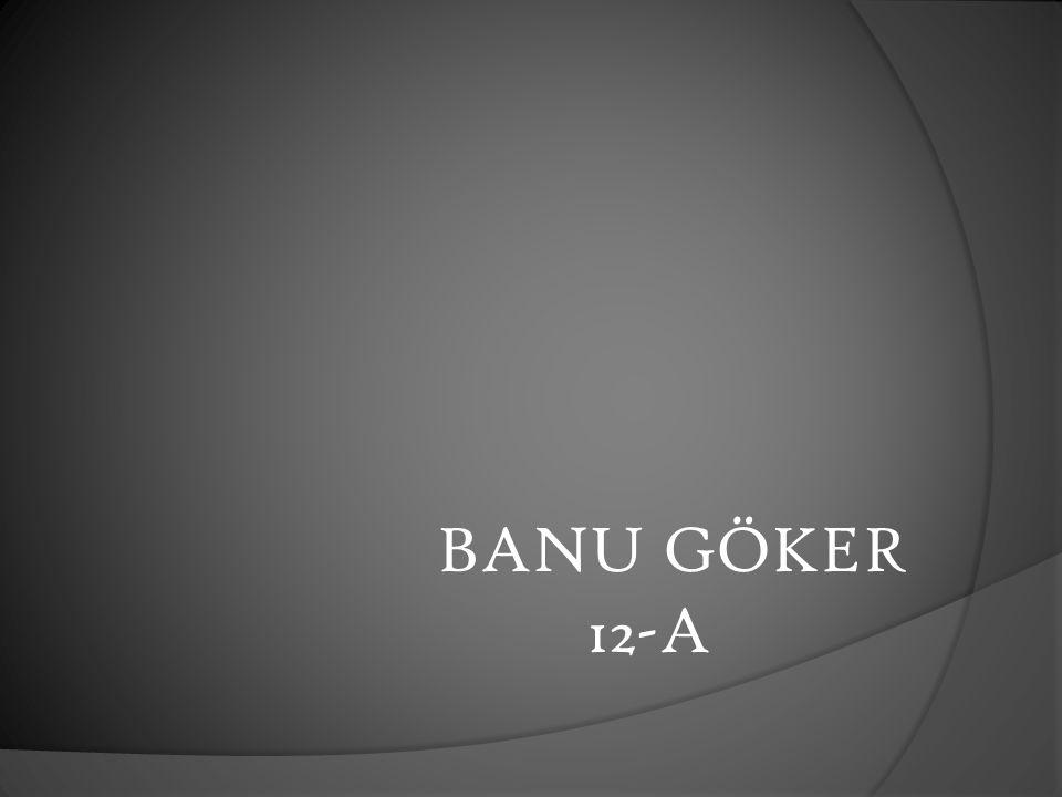 BANU GÖKER 12-A