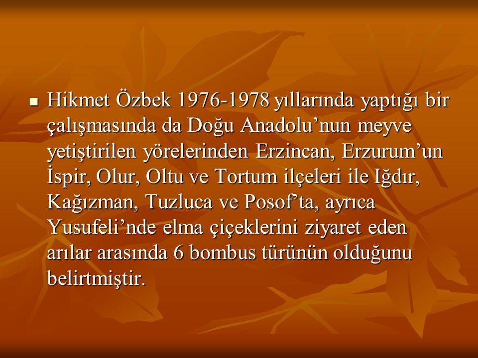 Hikmet Özbek 1976-1978 yıllarında yaptığı bir çalışmasında da Doğu Anadolu'nun meyve yetiştirilen yörelerinden Erzincan, Erzurum'un İspir, Olur, Oltu