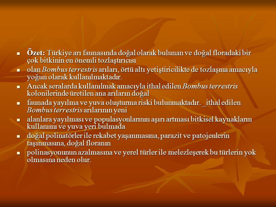 Özet: Türkiye arı faunasında doğal olarak bulunan ve doğal floradaki bir çok bitkinin en önemli tozlaştırıcısı Özet: Türkiye arı faunasında doğal olar