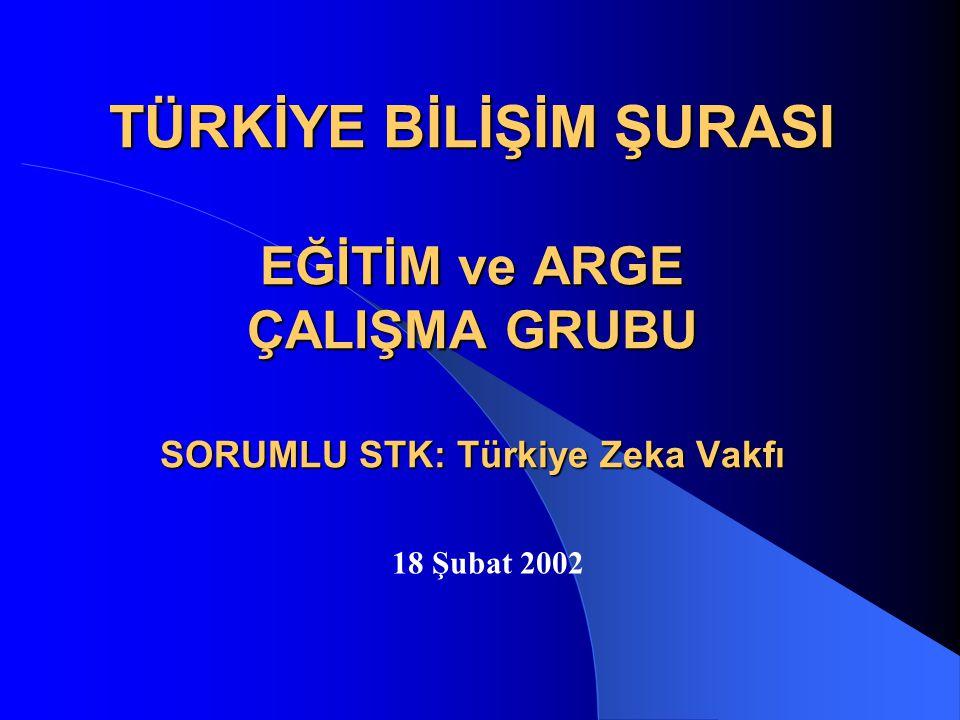 TÜRKİYE BİLİŞİM ŞURASI EĞİTİM ve ARGE ÇALIŞMA GRUBU SORUMLU STK: Türkiye Zeka Vakfı 18 Şubat 2002