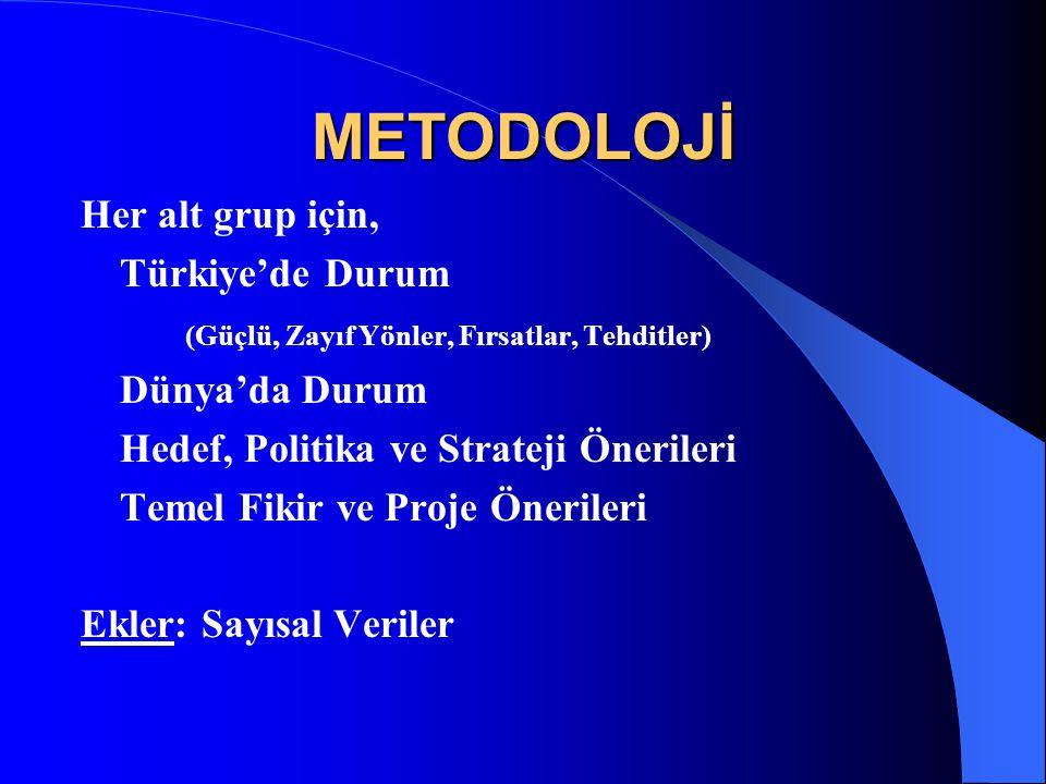 METODOLOJİ Her alt grup için, Türkiye'de Durum (Güçlü, Zayıf Yönler, Fırsatlar, Tehditler) Dünya'da Durum Hedef, Politika ve Strateji Önerileri Temel