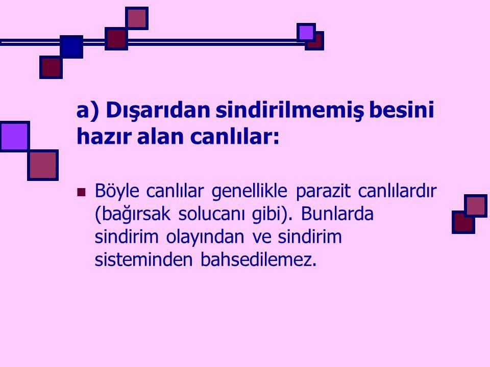 a) Dışarıdan sindirilmemiş besini hazır alan canlılar: Böyle canlılar genellikle parazit canlılardır (bağırsak solucanı gibi). Bunlarda sindirim olayı