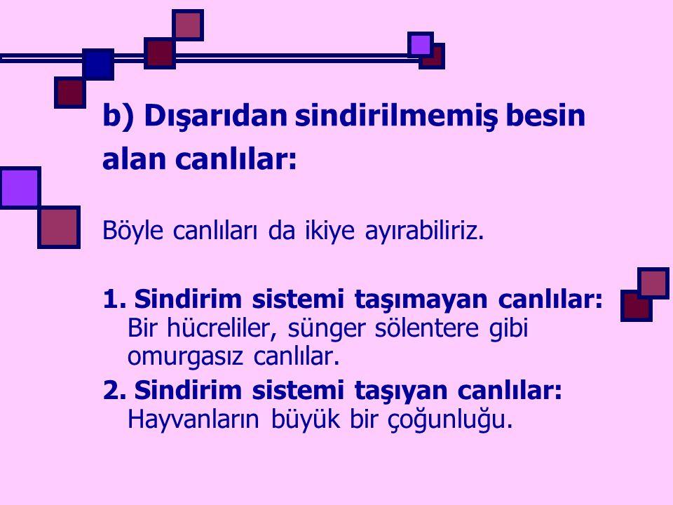 b) Dışarıdan sindirilmemiş besin alan canlılar: Böyle canlıları da ikiye ayırabiliriz. 1. Sindirim sistemi taşımayan canlılar: Bir hücreliler, sünger