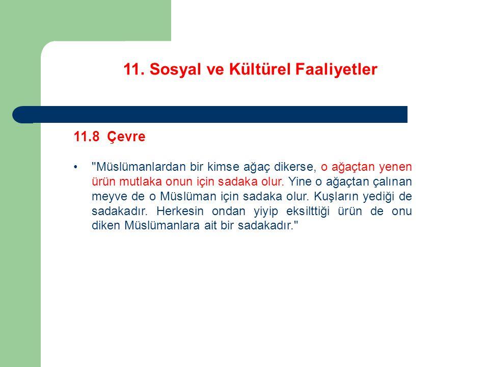 11. Sosyal ve Kültürel Faaliyetler 11.8 Çevre