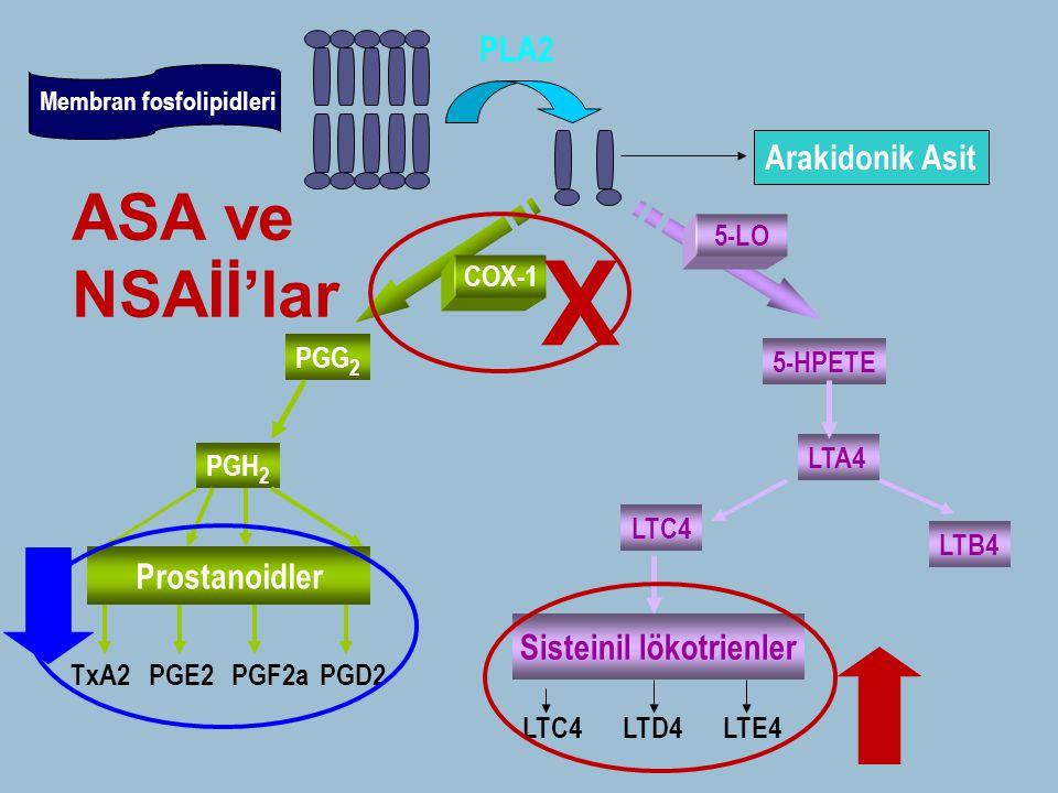Membran fosfolipidleri PLA2 Arakidonik Asit COX-1 5-LO PGG 2 PGH 2 Prostanoidler TxA2PGE2PGF2aPGD2 5-HPETE LTA4 LTB4 LTC4 Sisteinil lökotrienler LTC4L
