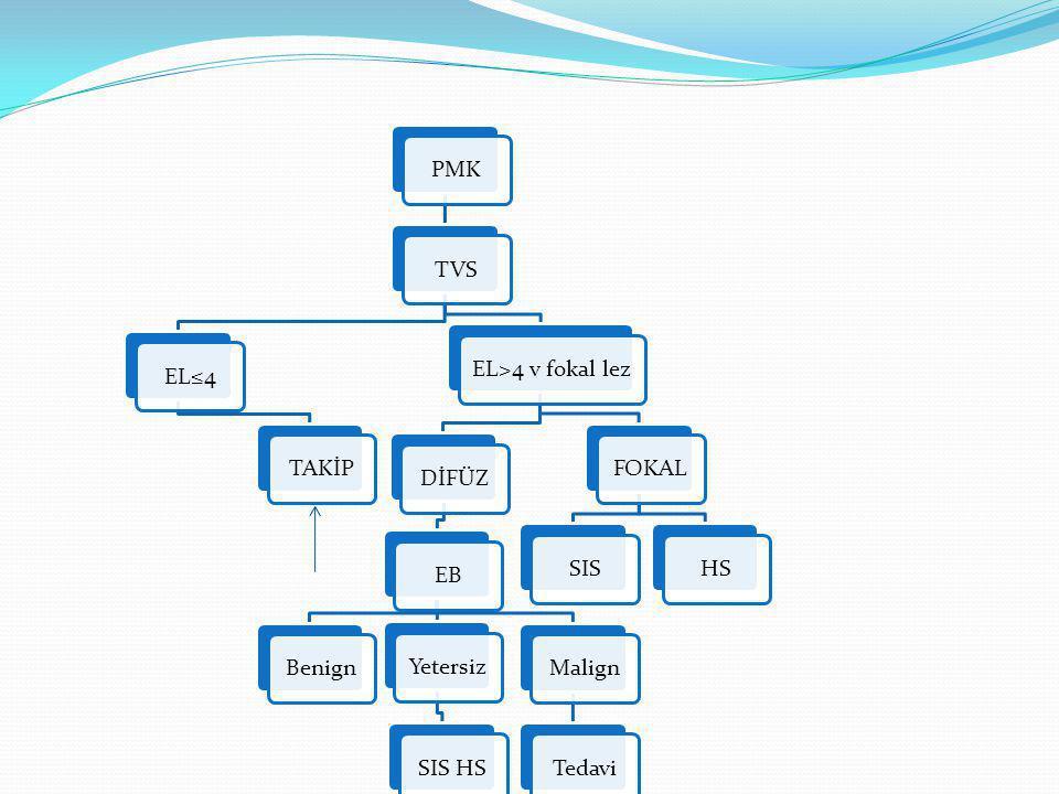 PMKTVSEL≤4TAKİPEL>4 v fokal lezDİFÜZEBBenignYetersizSIS HSMalignTedaviFOKALSISHS
