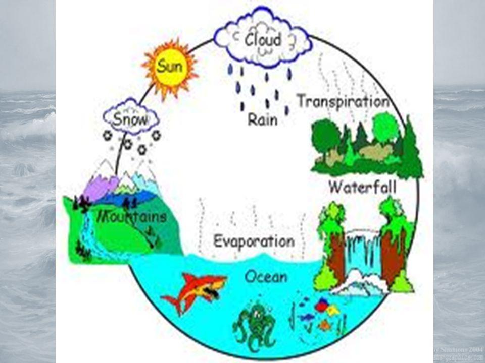 1)Suyun Serüveni Suyun Doğadaki Farklı Halleri Hava her zaman güneşli değildir.
