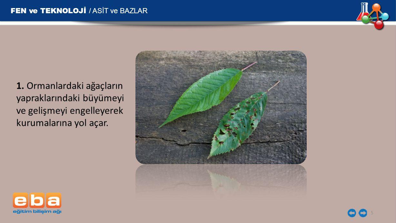 FEN ve TEKNOLOJİ / ASİT ve BAZLAR 6 2.