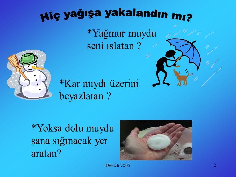 2 *Yağmur muydu seni ıslatan .*Kar mıydı üzerini beyazlatan .
