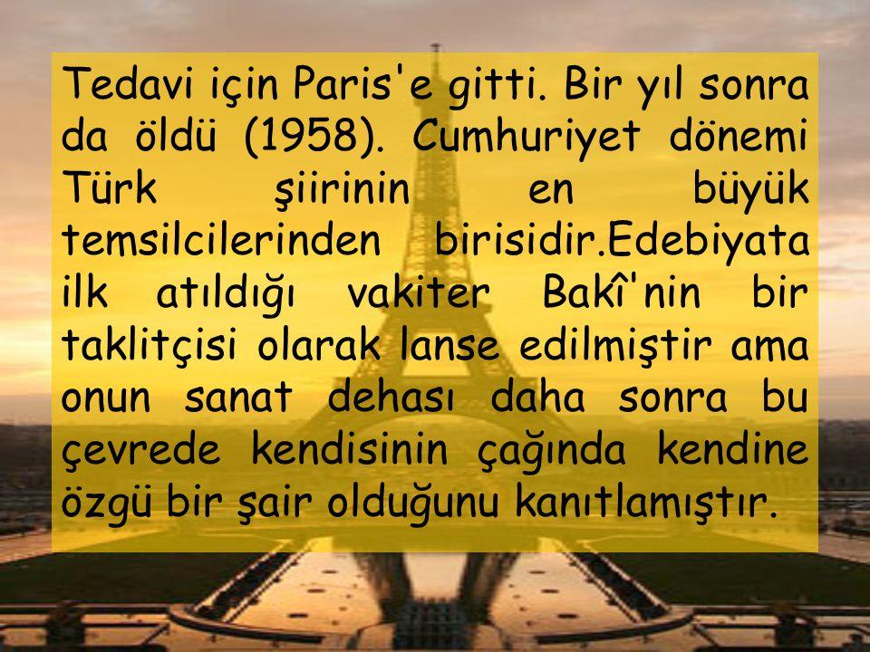 1913 yılında İstanbul'a döndü. Darüşşafaka, Medresetü'l-Vâizin ve Darülfünûn'da tarih ve edebiyat dersleri okuttu. Gazete ve dergilerde yazılar yazdı.