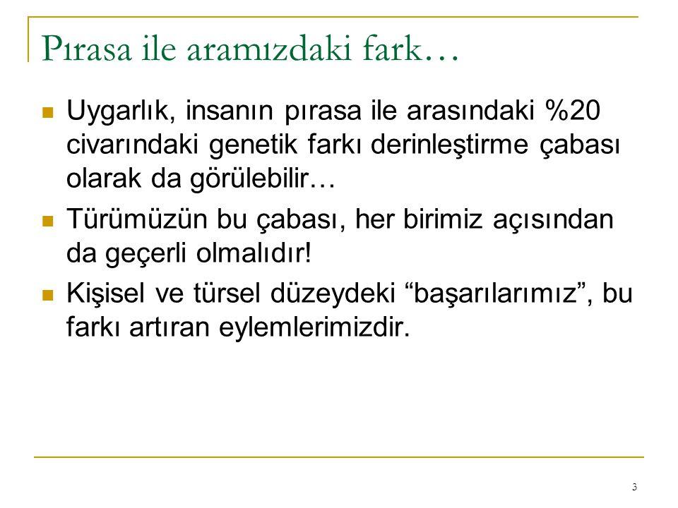 14 Doğu Anadolu işi kilim