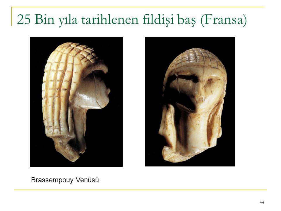 44 25 Bin yıla tarihlenen fildişi baş (Fransa) Brassempouy Venüsü