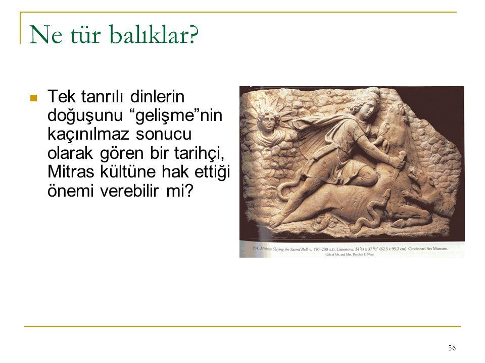 """56 Ne tür balıklar? Tek tanrılı dinlerin doğuşunu """"gelişme""""nin kaçınılmaz sonucu olarak gören bir tarihçi, Mitras kültüne hak ettiği önemi verebilir m"""