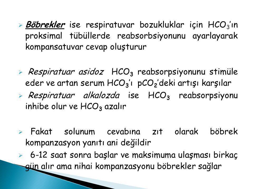  Böbrekler ise respiratuvar bozukluklar için HCO 3 'ın proksimal tübüllerde reabsorbsiyonunu ayarlayarak kompansatuvar cevap oluşturur  Respiratuar