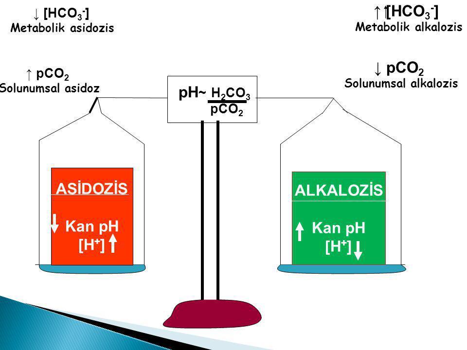 pH ~ H 2 CO 3 pCO 2 ASİDOZİS Kan pH [H + ] ALKALOZİS Kan pH [H + ] ↑ [HCO 3 - ] Metabolik alkalozis ↓ pCO 2 Solunumsal alkalozis ↓ [HCO 3 - ] Metabol