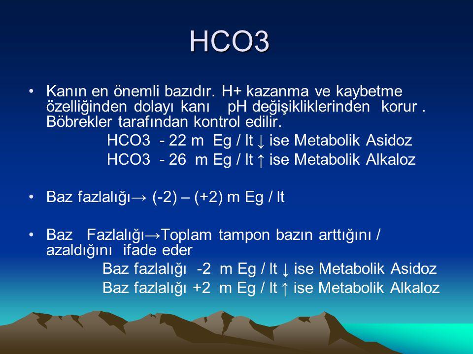 HCO3 Kanın en önemli bazıdır. H+ kazanma ve kaybetme özelliğinden dolayı kanı pH değişikliklerinden korur. Böbrekler tarafından kontrol edilir. HCO3 -