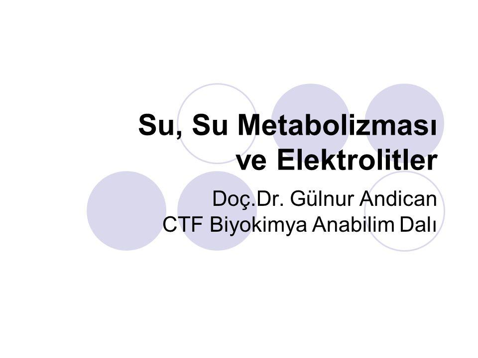 Su, Su Metabolizması ve Elektrolitler Doç.Dr. Gülnur Andican CTF Biyokimya Anabilim Dalı
