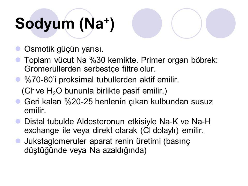 Sodyum (Na + ) Osmotik güçün yarısı. Toplam vücut Na %30 kemikte. Primer organ böbrek: Gromerüllerden serbestçe filtre olur. %70-80'i proksimal tubull