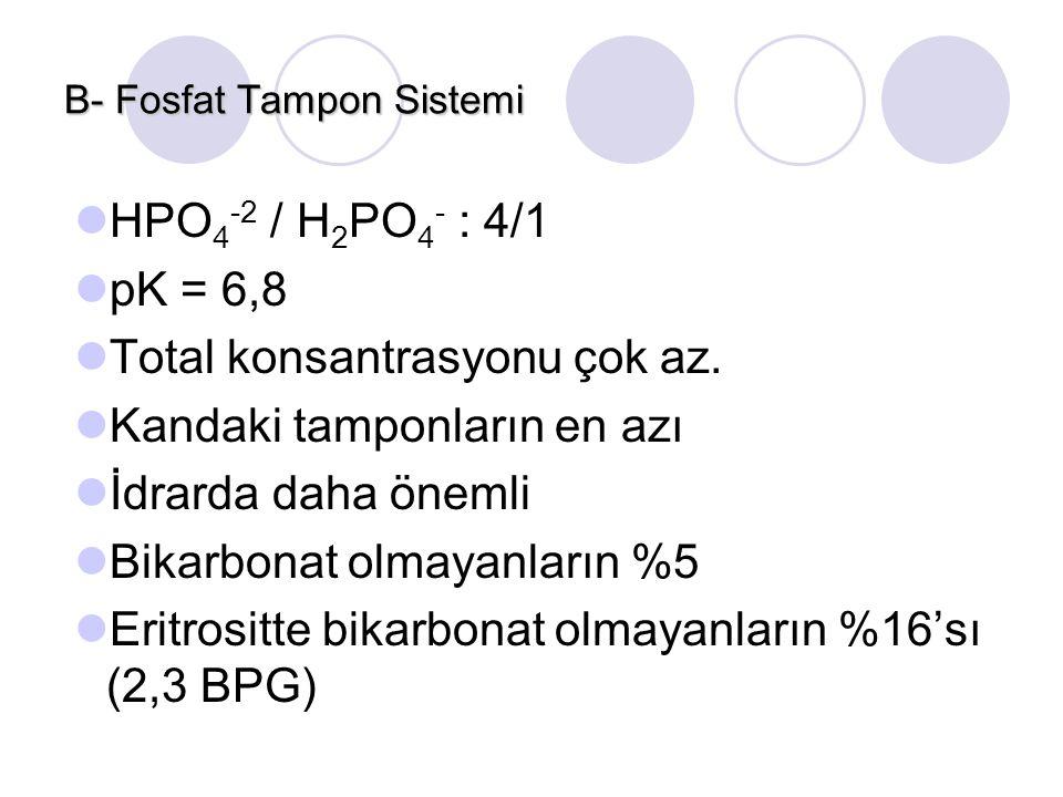 B- Fosfat Tampon Sistemi HPO 4 -2 / H 2 PO 4 - : 4/1 pK = 6,8 Total konsantrasyonu çok az. Kandaki tamponların en azı İdrarda daha önemli Bikarbonat o