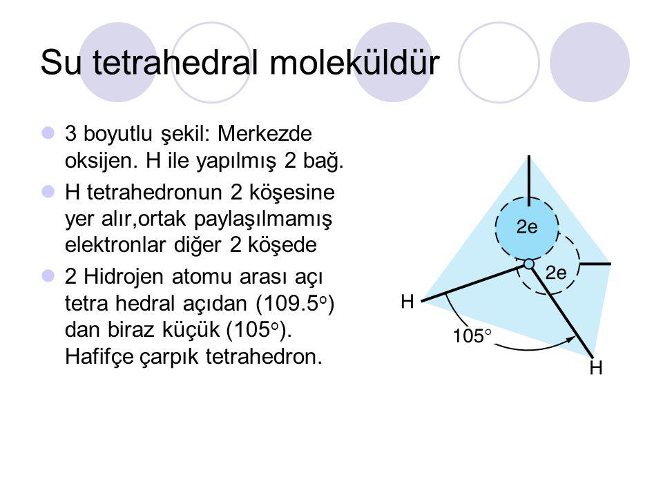 Su tetrahedral moleküldür 3 boyutlu şekil: Merkezde oksijen. H ile yapılmış 2 bağ. H tetrahedronun 2 köşesine yer alır,ortak paylaşılmamış elektronlar