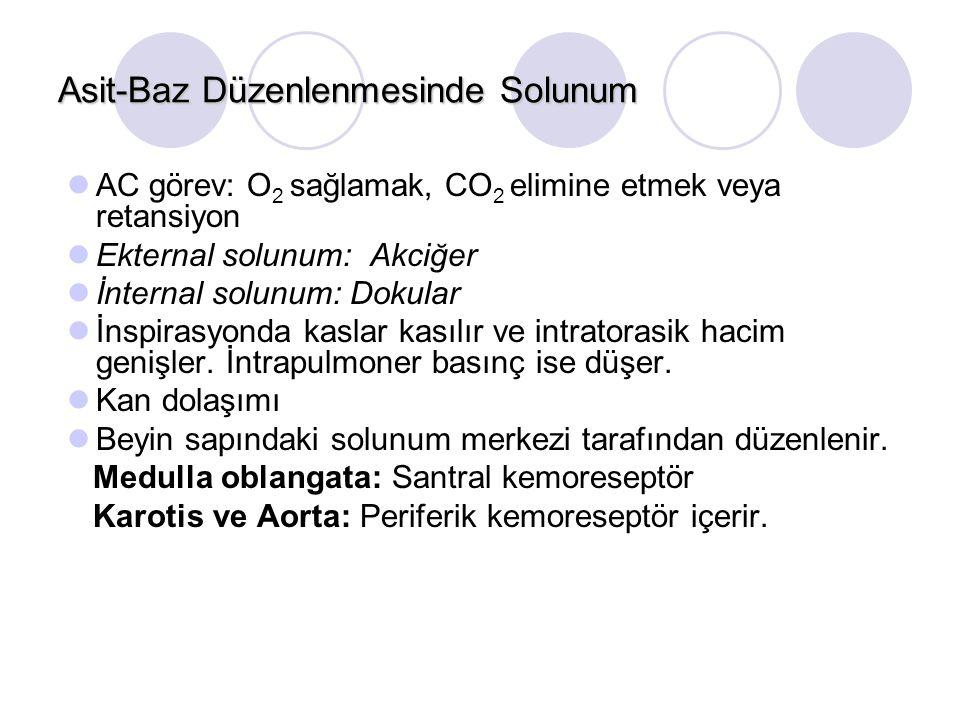 Asit-Baz Düzenlenmesinde Solunum AC görev: O 2 sağlamak, CO 2 elimine etmek veya retansiyon Ekternal solunum: Akciğer İnternal solunum: Dokular İnspirasyonda kaslar kasılır ve intratorasik hacim genişler.