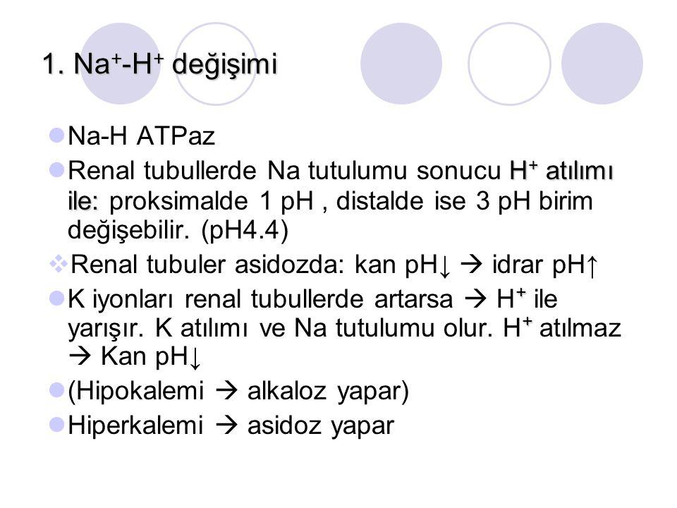 1. Na + -H + değişimi Na-H ATPaz H + atılımı ile: Renal tubullerde Na tutulumu sonucu H + atılımı ile: proksimalde 1 pH, distalde ise 3 pH birim değiş