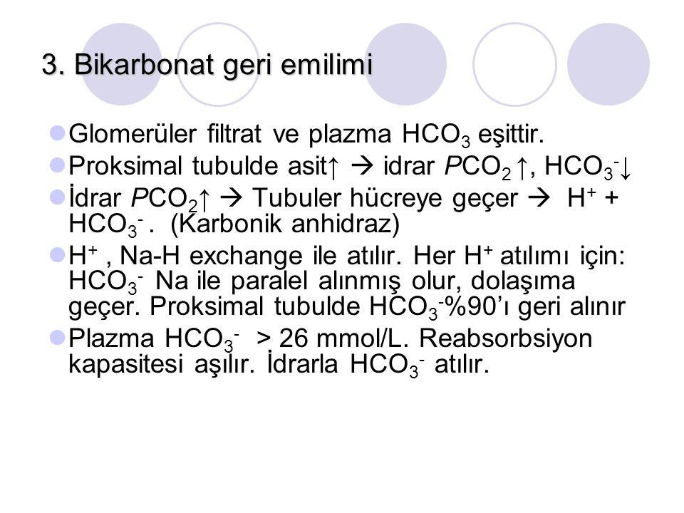 3. Bikarbonat geri emilimi Glomerüler filtrat ve plazma HCO 3 eşittir. Proksimal tubulde asit↑  idrar PCO 2 ↑, HCO 3 - ↓ İdrar PCO 2 ↑  Tubuler hücr