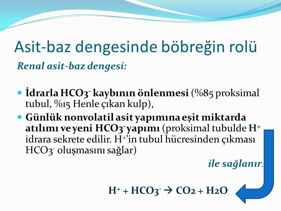 Asit-baz dengesinde böbreğin rolü Renal asit-baz dengesi: İdrarla HCO3 - kaybının önlenmesi (%85 proksimal tubul, %15 Henle çıkan kulp), Günlük nonvolatil asit yapımına eşit miktarda atılımı ve yeni HCO3 - yapımı (proksimal tubulde H + idrara sekrete edilir.