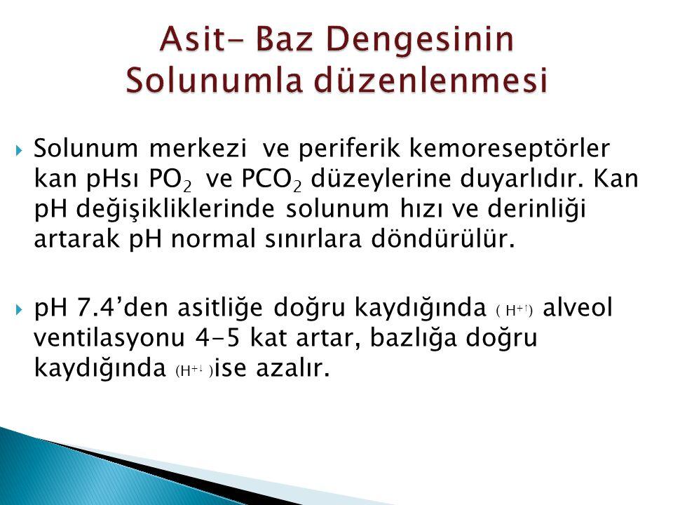  Solunum merkezi ve periferik kemoreseptörler kan pHsı PO 2 ve PCO 2 düzeylerine duyarlıdır.