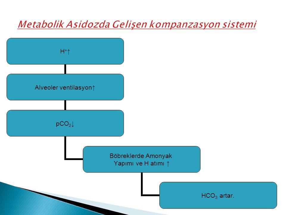 H+↑H+↑ Alveoler ventilasyon↑ pCO2↓ Böbreklerde Amonyak Yapımı ve H atımı ↑ HCO3 artar.