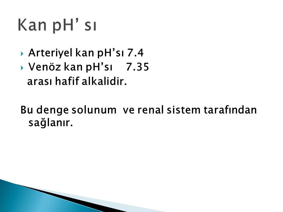  Arteriyel kan pH'sı 7.4  Venöz kan pH'sı 7.35 arası hafif alkalidir.