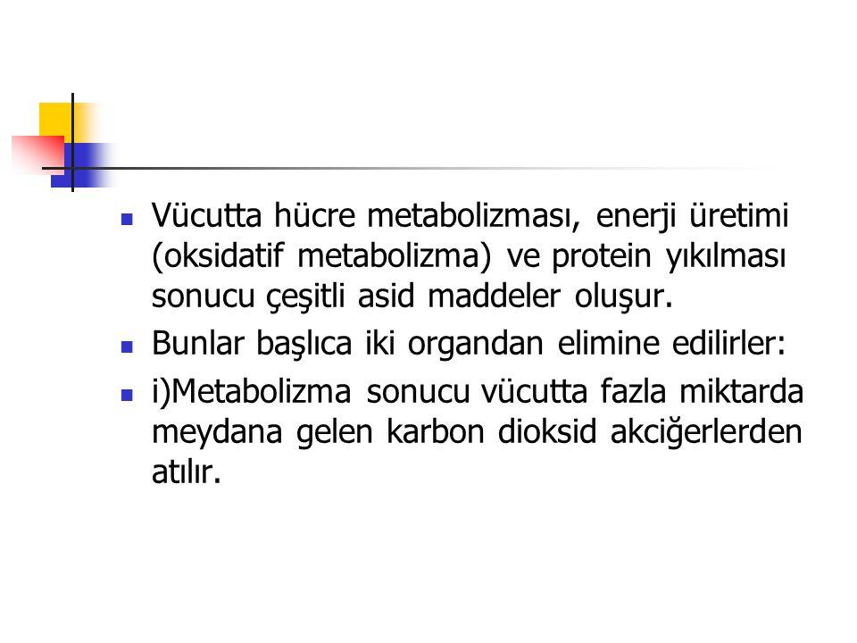 Vücutta hücre metabolizması, enerji üretimi (oksidatif metabolizma) ve protein yıkılması sonucu çeşitli asid maddeler oluşur. Bunlar başlıca iki organ