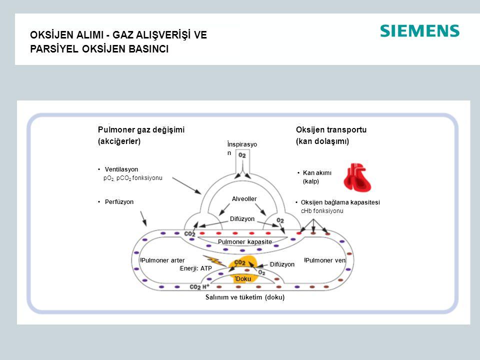 OKSİJEN ALIMI - GAZ ALIŞVERİŞİ VE PARSİYEL OKSİJEN BASINCI Pulmoner gaz değişimi (akciğerler) Oksijen transportu (kan dolaşımı) İnspirasyo n Kan akımı