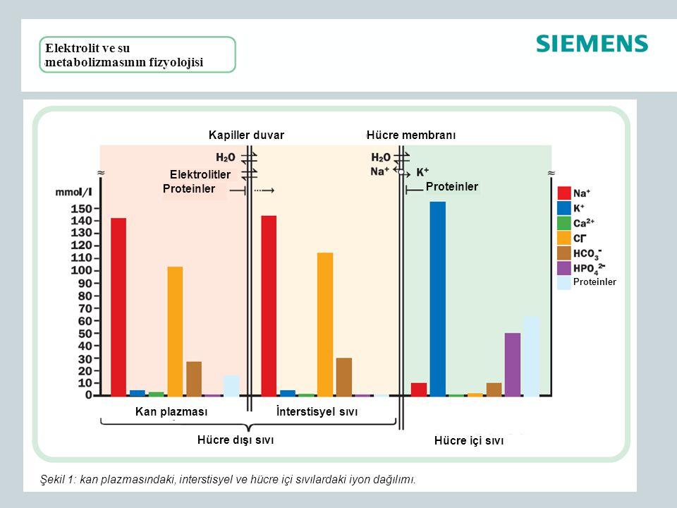 Elektrolit ve su metabolizmasının fizyolojisi Hücre membranıKapiller duvar Proteinler Elektrolitler İnterstisyel sıvıKan plazması Hücre içi sıvı Hücre