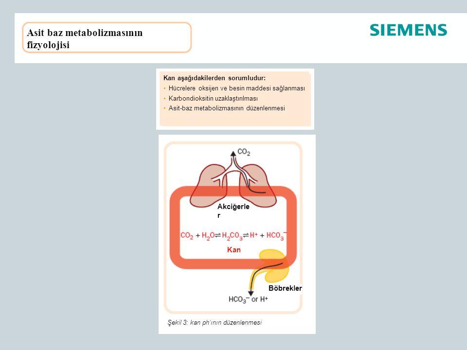 Asit baz metabolizmasının fizyolojisi Kan aşağıdakilerden sorumludur: Hücrelere oksijen ve besin maddesi sağlanması Karbondioksitin uzaklaştırılması A