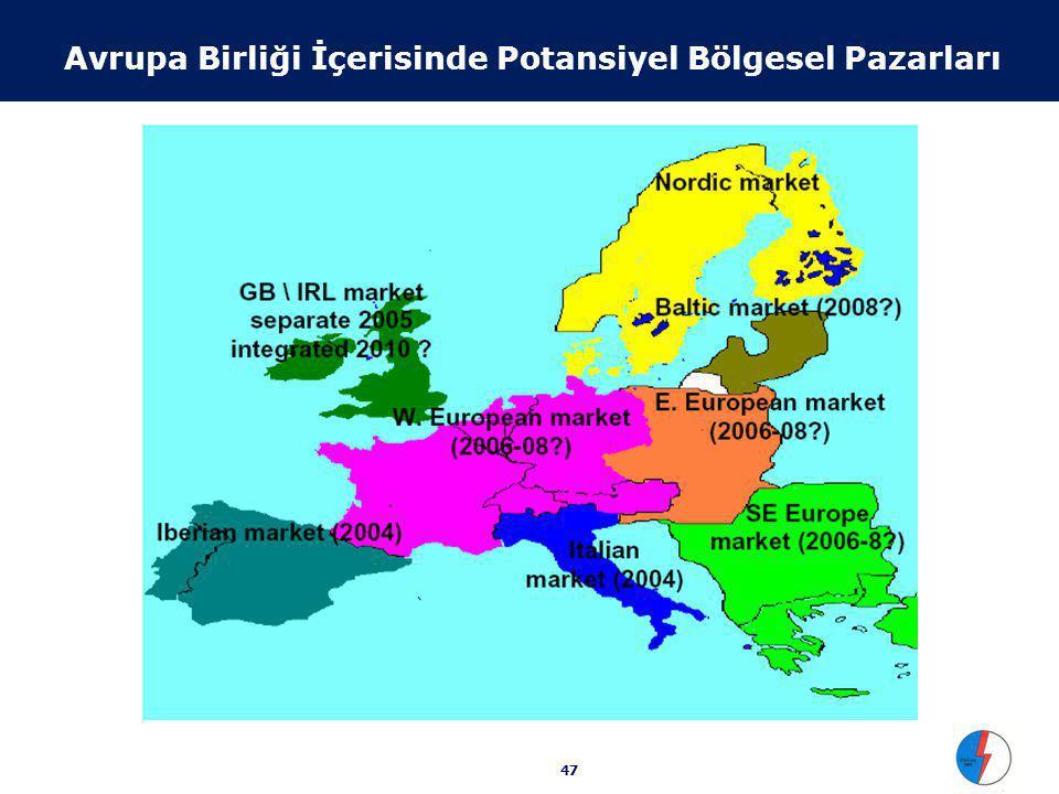 47 Avrupa Birliği İçerisinde Potansiyel Bölgesel Pazarları