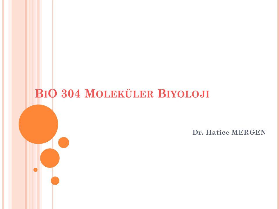 B I O 304 M OLEKÜLER B IYOLOJI Dr. Hatice MERGEN