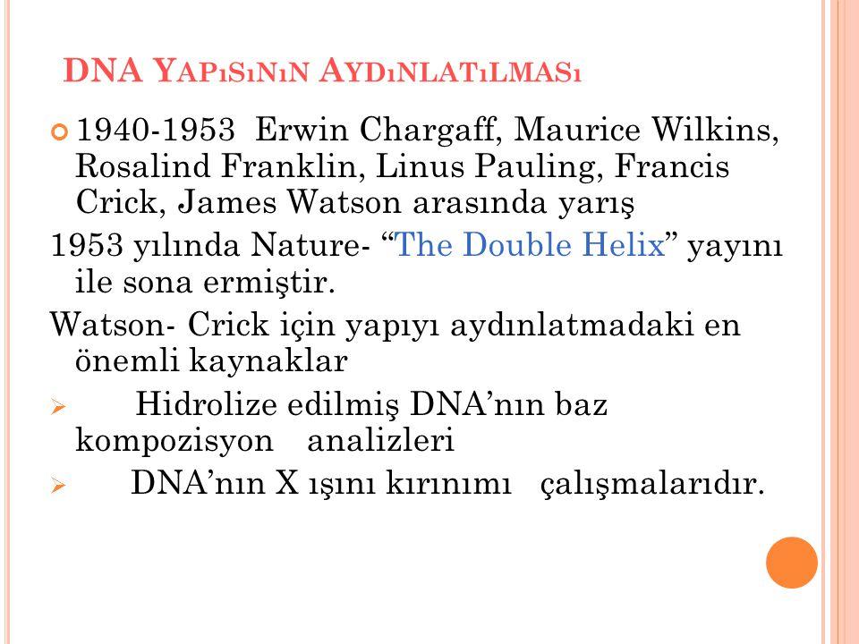 DNA Y APıSıNıN A YDıNLATıLMASı 1940-1953 Erwin Chargaff, Maurice Wilkins, Rosalind Franklin, Linus Pauling, Francis Crick, James Watson arasında yarış 1953 yılında Nature- The Double Helix yayını ile sona ermiştir.