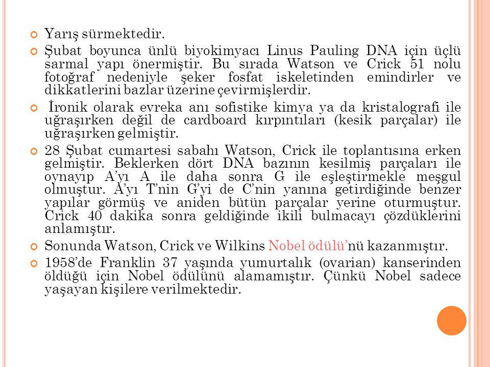 Yarış sürmektedir. Şubat boyunca ünlü biyokimyacı Linus Pauling DNA için üçlü sarmal yapı önermiştir. Bu sırada Watson ve Crick 51 nolu fotoğraf neden