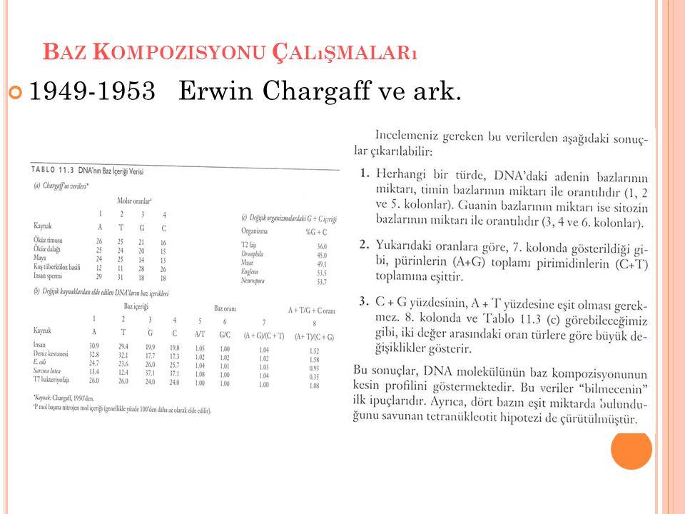 B AZ K OMPOZISYONU Ç ALıŞMALARı 1949-1953 Erwin Chargaff ve ark.