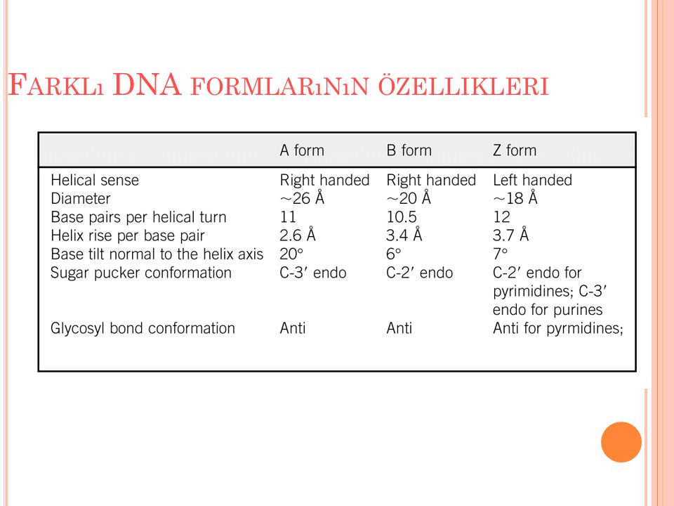 F ARKLı DNA FORMLARıNıN ÖZELLIKLERI