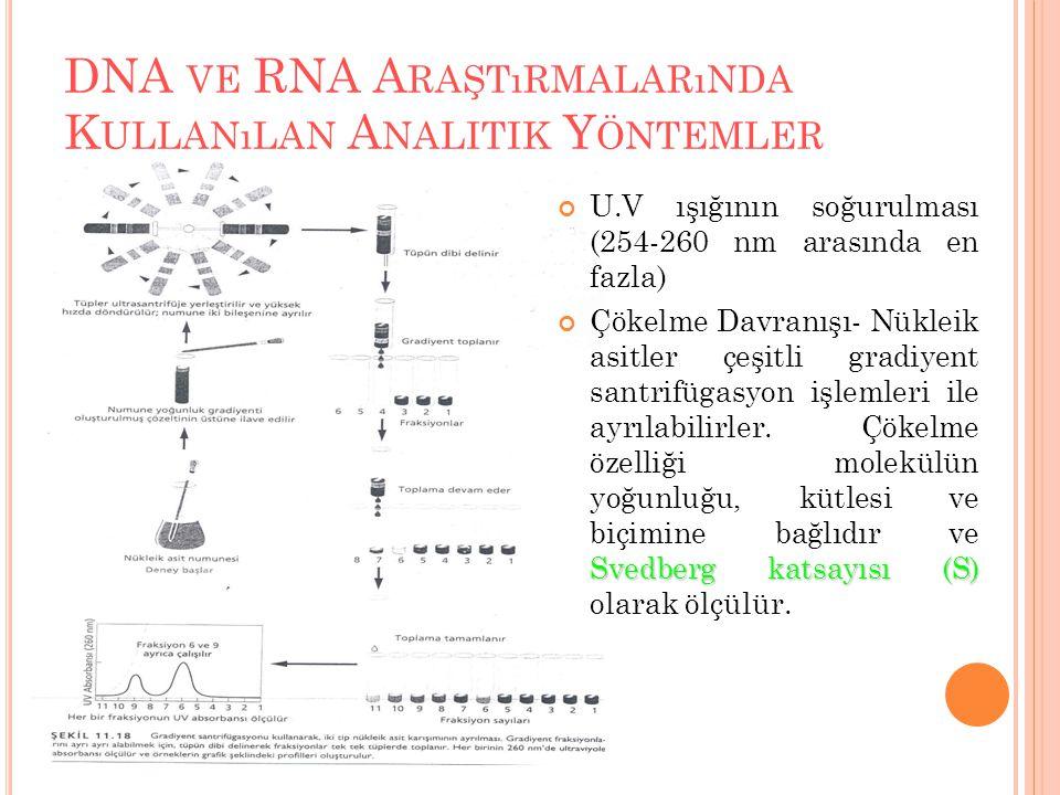 DNA VE RNA A RAŞTıRMALARıNDA K ULLANıLAN A NALITIK Y ÖNTEMLER U.V ışığının soğurulması (254-260 nm arasında en fazla) Svedberg katsayısı (S) Çökelme D